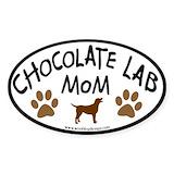 Chocolate lab Single