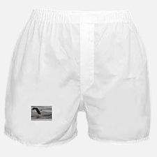 Take Out Boxer Shorts