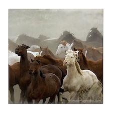Colorado Horse Roundup Tile Coaster