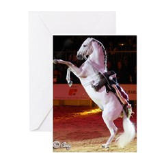 Cheval Passion Greeting Cards (Pk of 10)