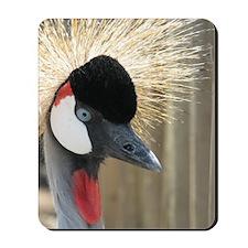 Helaine's Crowned Crane Mousepad