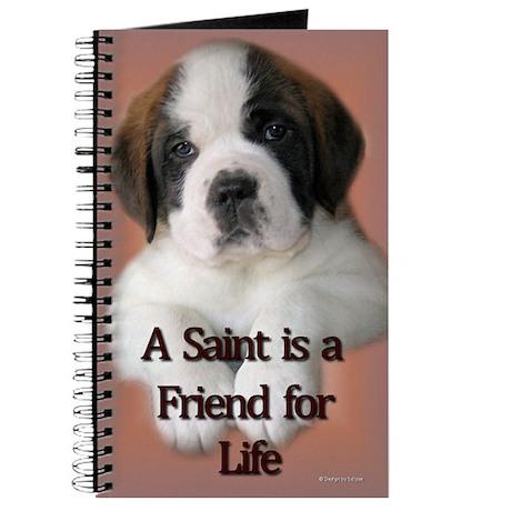 St. Bernard Puppy Journal