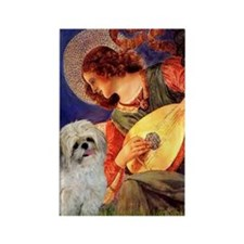 Mandolin Angel & Shih Tzu Rectangle Magnet