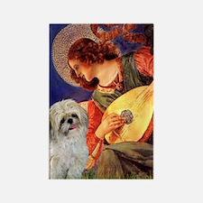 Mandolin Angel & Shih Tzu Rectangle Magnet