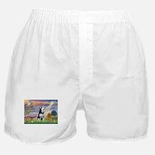 Cloud Angel & Siberian Husky Boxer Shorts