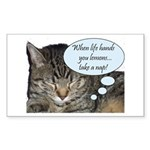 CAT NAP HUMOR Rectangle Sticker