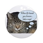 CAT NAP HUMOR Ornament (Round)