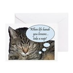 CAT NAP HUMOR Greeting Cards (Pk of 10)