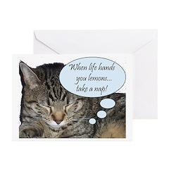 CAT NAP HUMOR Greeting Cards (Pk of 10)