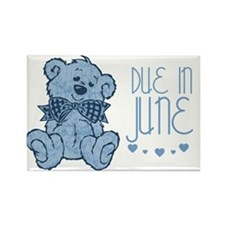 Blue Marbled Teddy Due In June Rectangle Magnet