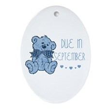 Blue Marbled Teddy Due September Oval Ornament