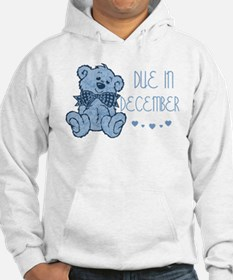 Blue Marbled Teddy Due In December Hoodie