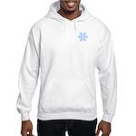 Flurry Snowflake XVII Hooded Sweatshirt