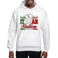 World's Greatest Italian Stallion Hoodie