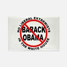 Anti-Obama Anti-Liberal Rectangle Magnet