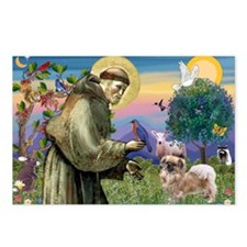 St. Francis & Tibetan Spaniel Postcards (Package