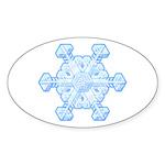 Flurry Snowflake XI Oval Sticker (10 pk)