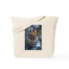 Capuchin Monkey Tote Bag