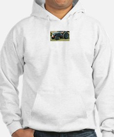 Funny Mens ford Hoodie