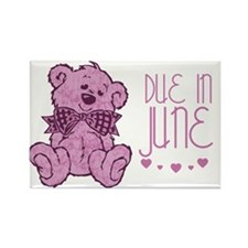 Pink Marble Teddy Due In June Rectangle Magnet