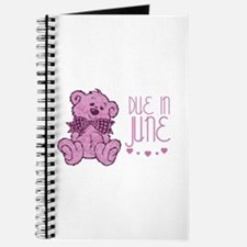 Pink Marble Teddy Due In June Journal