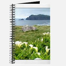 Funny Ireland landscapes Journal