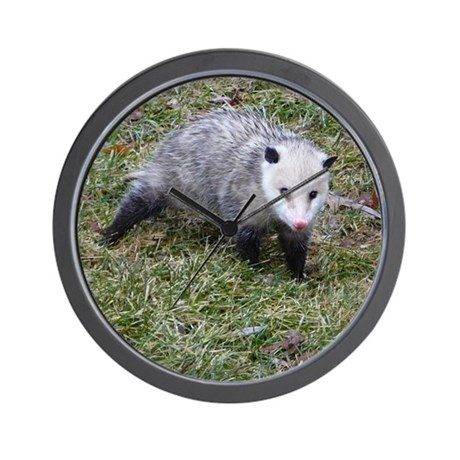 Opossum Wall Clock