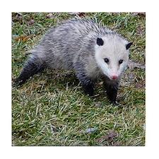 Opossum Tile Coaster