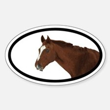 Horse Euro Oval Decal