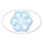 Flurry Snowflake II Oval Sticker (10 pk)