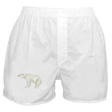 polar bear Boxer Shorts