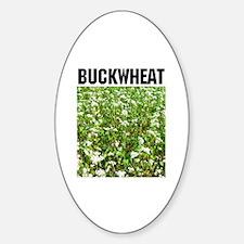 Buckwheat Oval Decal