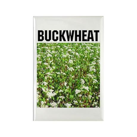 Buckwheat Rectangle Magnet