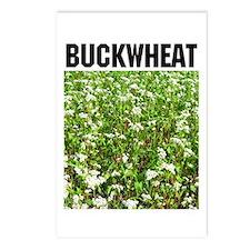 Buckwheat Postcards (Package of 8)