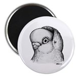 Reinaugen Pigeon Magnet