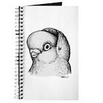 Reinaugen Pigeon Journal