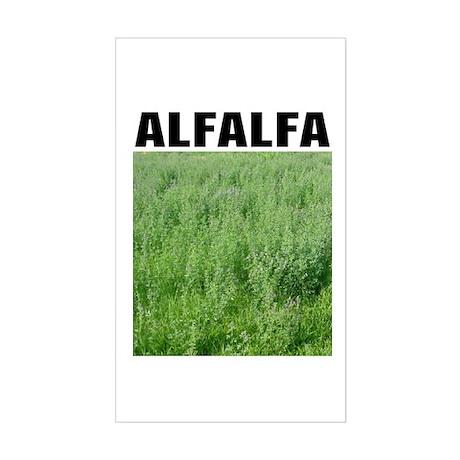 Alfalfa Rectangle Sticker