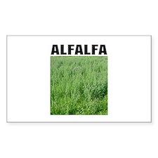 Alfalfa Rectangle Decal