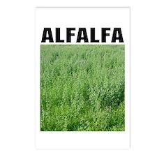 Alfalfa Postcards (Package of 8)