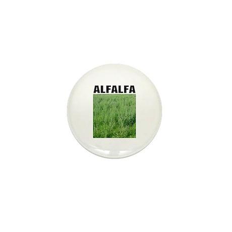 Alfalfa Mini Button (10 pack)