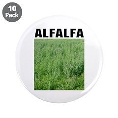"Alfalfa 3.5"" Button (10 pack)"