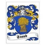 Staub Family Crest Small Poster