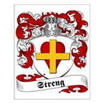Streng Family Crest Small Poster