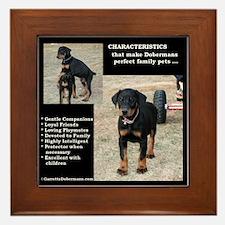 Doberman Characteristics Framed Tile