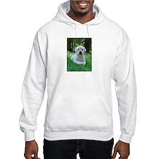 Funny Labrador puppy Hoodie