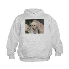 Cute Labrador 1 Hoodie