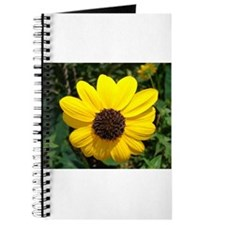 Funny Chrysanthemum Journal