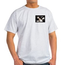Holy Ash Grey T-Shirt