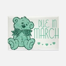 Green Marble Teddy Due In March Rectangle Magnet