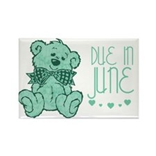 Green Marble Teddy Due In June Rectangle Magnet